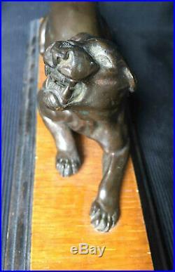 Beau bronze ancien Panthère feulant XIX° siècle sur socle bois